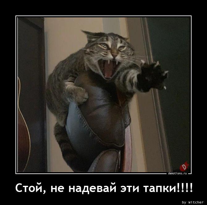 Стой, не надевай эти тапки!!!!