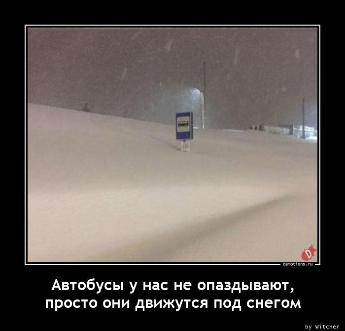 Автобусы у нас не опаздывают,nпросто они движутся под снегом