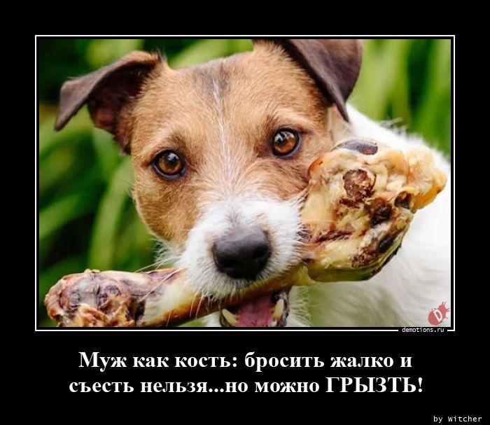 Муж как кость: бросить жалко и съесть нельзя...но можно ГРЫЗТЬ!