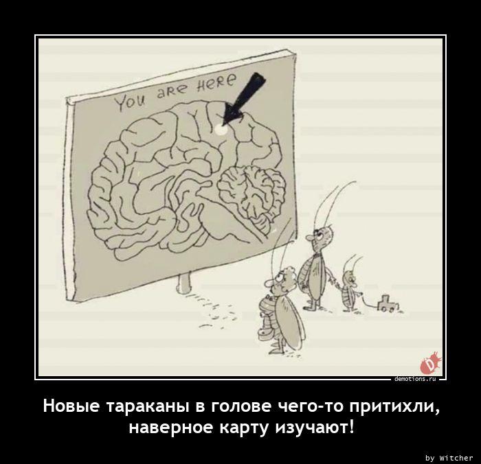 Новые тараканы в голове чего-то притихли, наверное карту изучают!