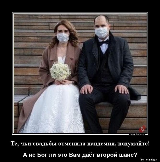 Те, чьи свадьбы отменила пандемия, подумайте!