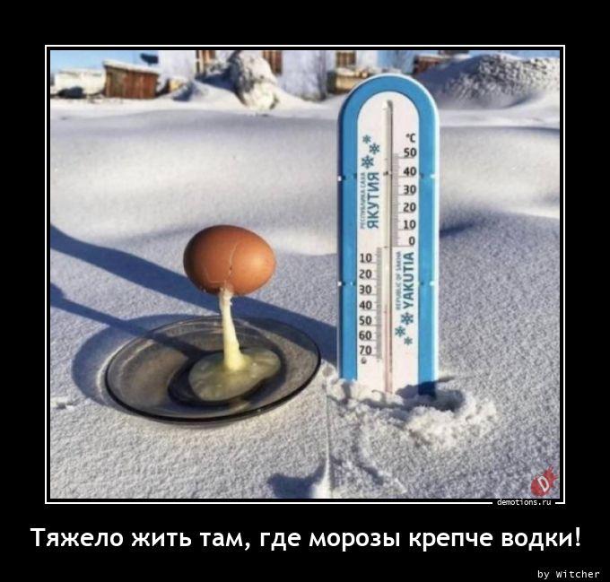 Тяжело жить там, где морозы крепче водки!