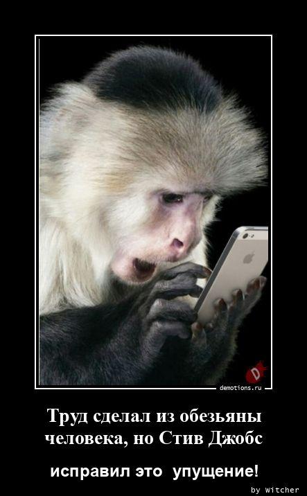 Труд сделал из обезьяны человека, но Стив Джобс