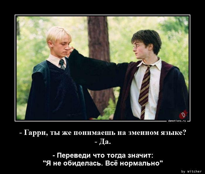- Гарри, ты же понимаешь на змеином языке? - Да.