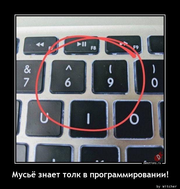 Мусьё знает толк в программировании!