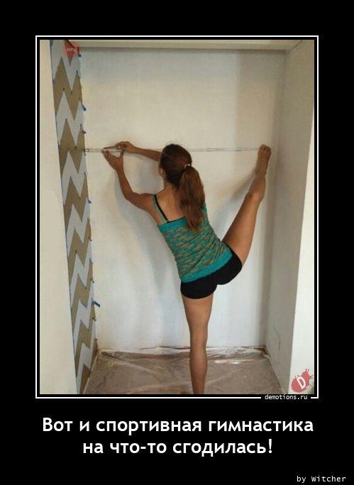 Вот и спортивная гимнастика на что-то сгодилась!