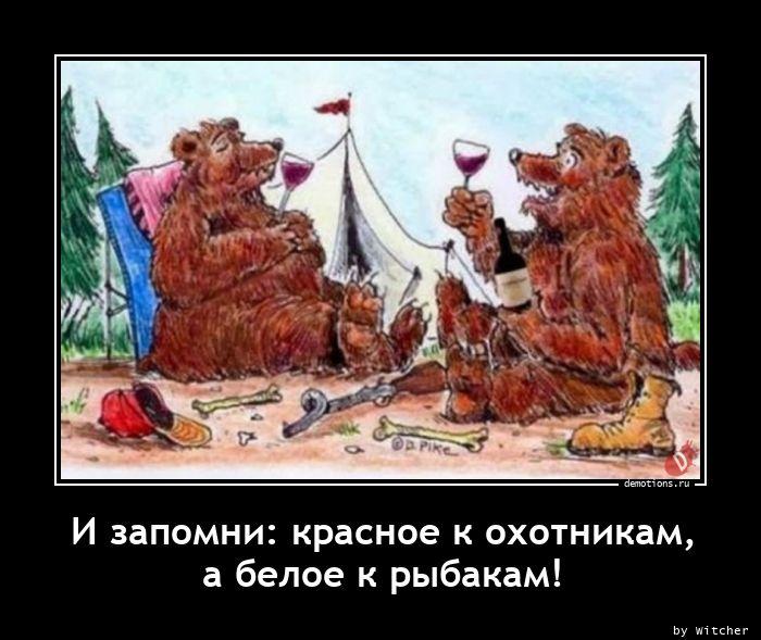 И запомни: красное к охотникам, а белое к рыбакам!