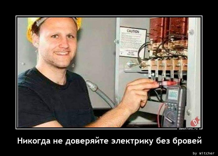 Никогда не доверяйте электрику без бровей