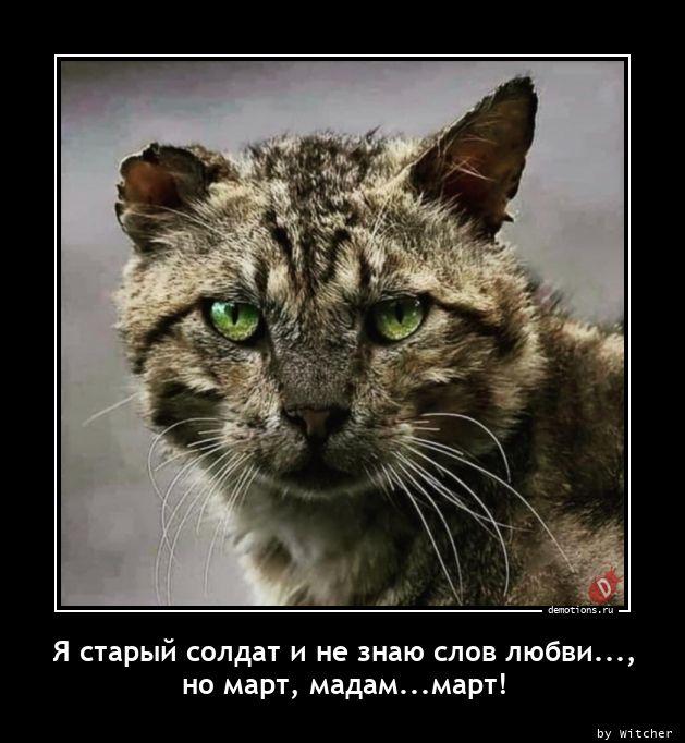 Я старый солдат и не знаю слов любви..., но март, мадам...март!