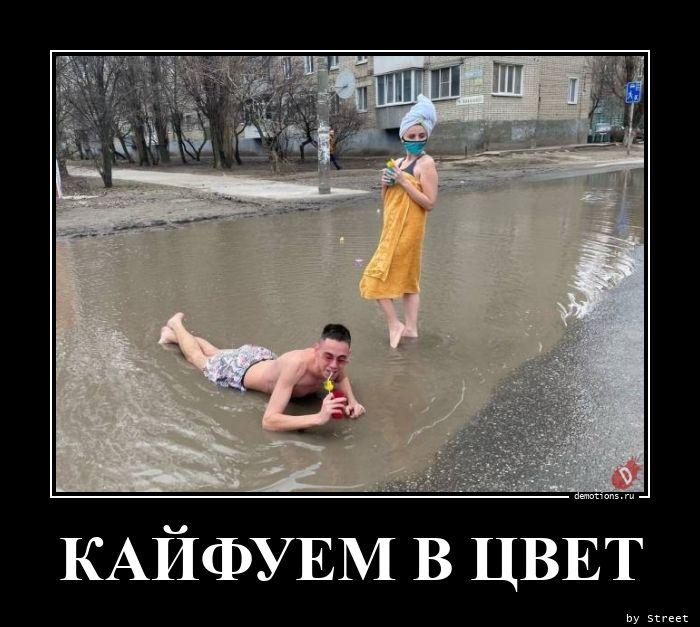 КАЙФУЕМ В ЦВЕТ