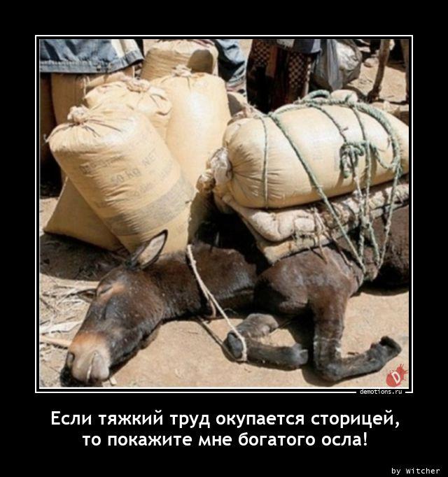 Если тяжкий труд окупается сторицей, то покажите мне богатого осла!