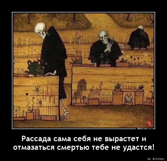 Рассада сама себя не вырастет и  отмазаться смертью тебе не удастся!