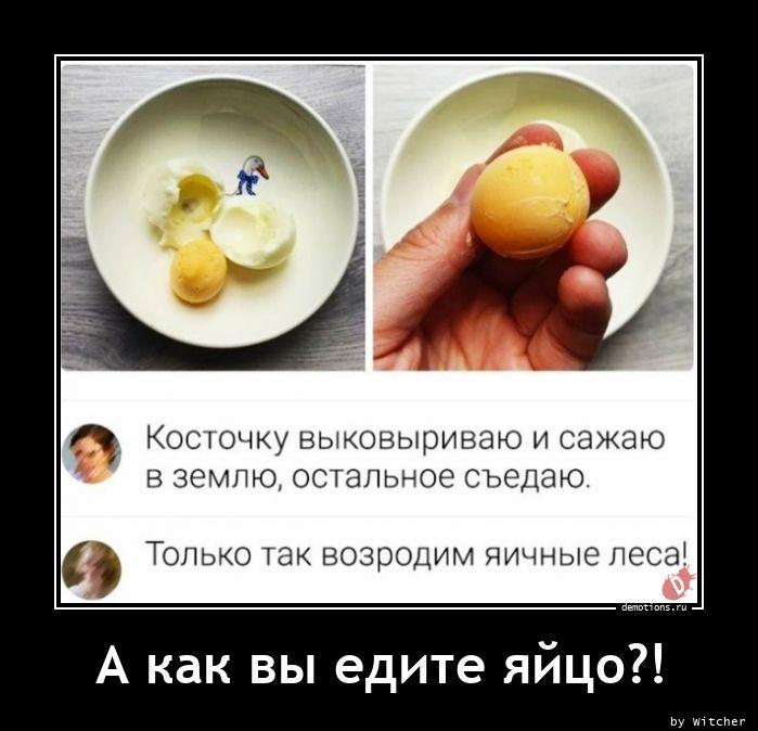 А как вы едите яйцо?!