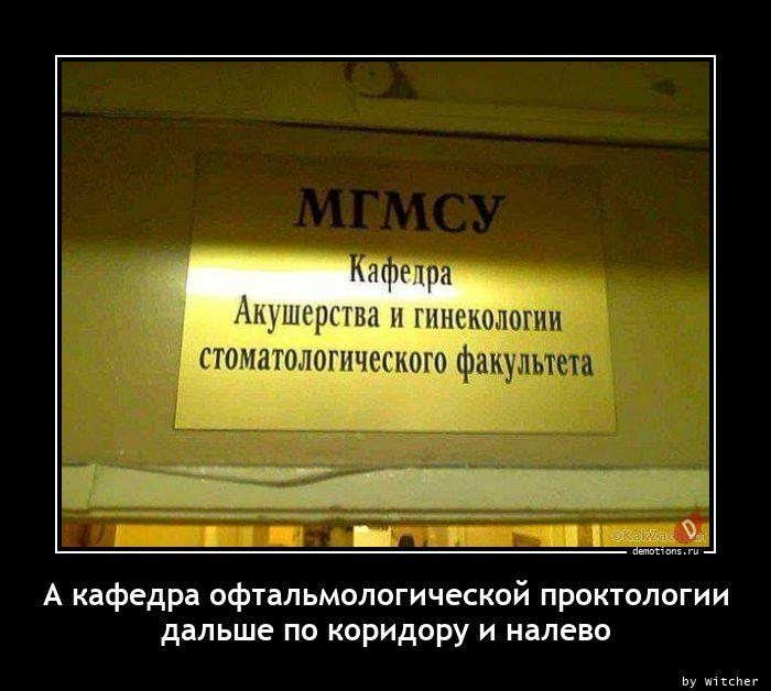 А кафедра офтальмологической проктологии дальше по коридору и налево