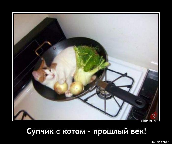Супчик с котом - прошлый век!