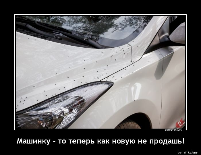 Машинку - то теперь как новую не продашь!