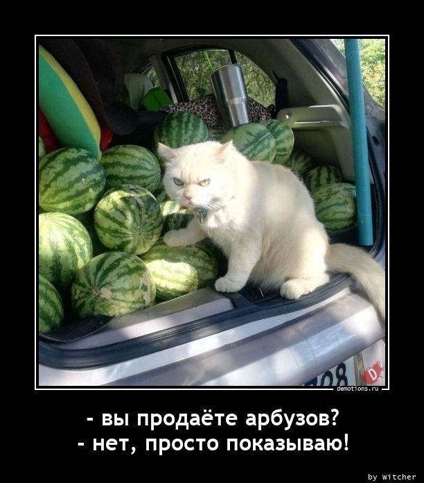 - вы продаёте арбузов? - нет, просто показываю!