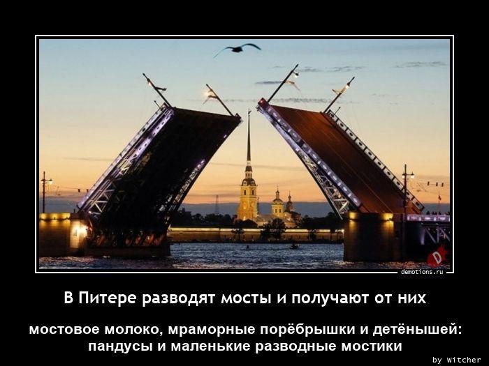 В Питере разводят мосты и получают от них