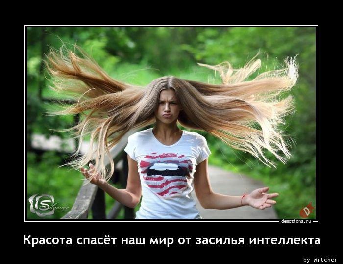 Красота спасёт наш мир от засилья интеллекта