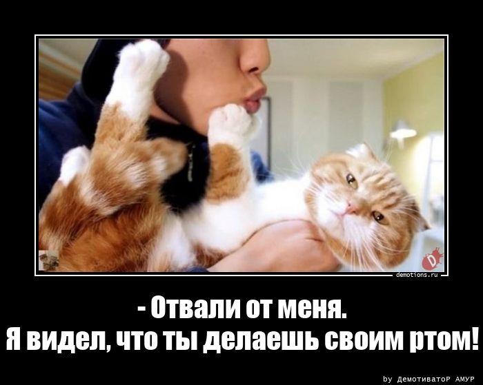 - Отвали от меня.Я видел, что ты делаешь своим ртом!