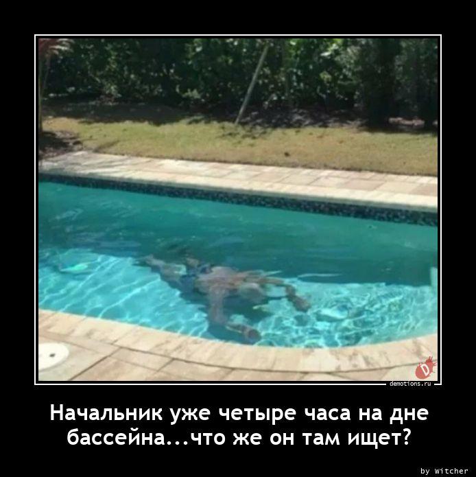 Начальник уже четыре часа на дне бассейна...что же он там ищет?
