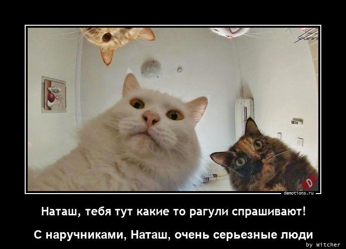 Наташ, тебя тут какие то рагули спрашивают!
